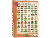 Eurographics - 60000598 1000 Piece Jigsaw Puzzle - Herbs and Spices